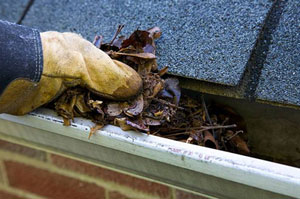 Gutter Cleaning Burntwood Staffordshire